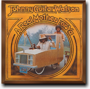 johnny_guitar_watson-a_real_mother_for_ ya.jpg